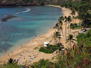 Waikiki Trolly- Hanauma Bay -Kathy 4   by KathyCat102