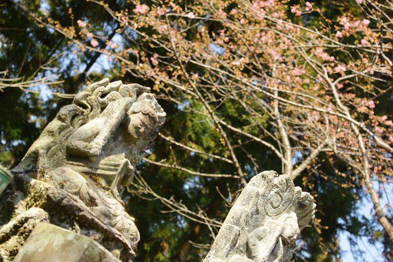 2014-03-16_00073_高松山