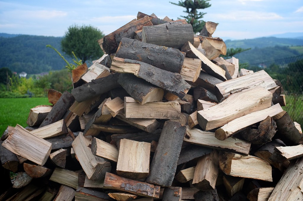 256/365: Pile of wood