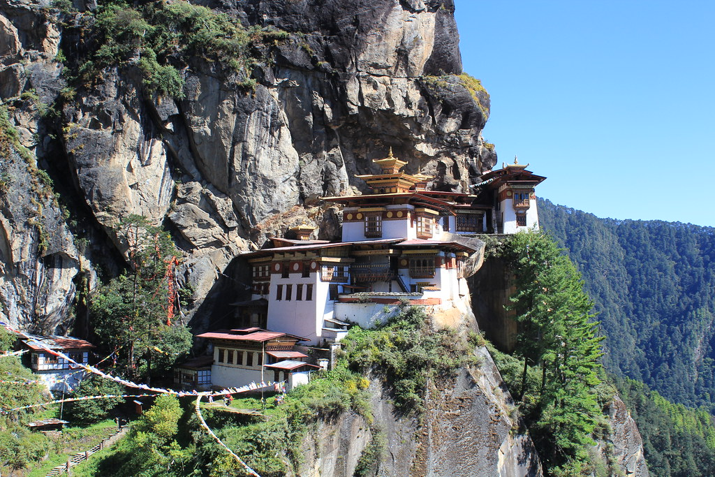Image result for tigers nest