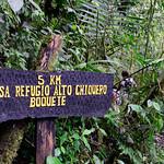 01 Viajfilos en Panama. Sendero Quetzal 41