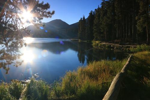 rockymountainnationalpark rmnp colorado usa spraguelake lake water forest trees sunrise sun sunburst reflection landscape waterscape
