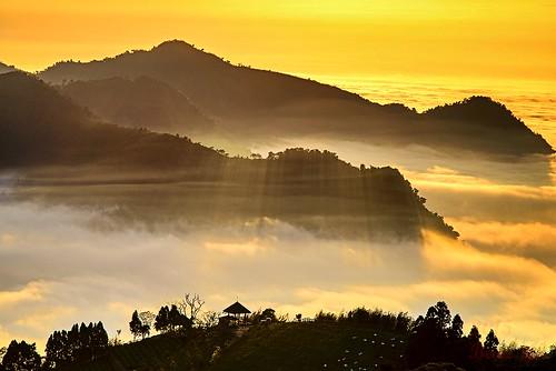 夕陽 風景 阿里山 雲海 色溫 斜射光 隙頂 二延平 傳說路