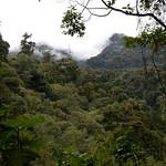 01 Viajfilos en Panama. Sendero Quetzal 15
