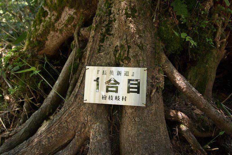 20150712-燧ヶ岳-0924.jpg