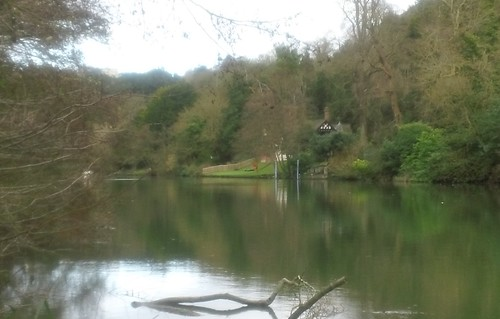 A glimpse of Cliveden It's the white building barely visible top left, uphill
