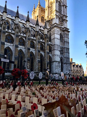Remembrance at Westminster Abbey