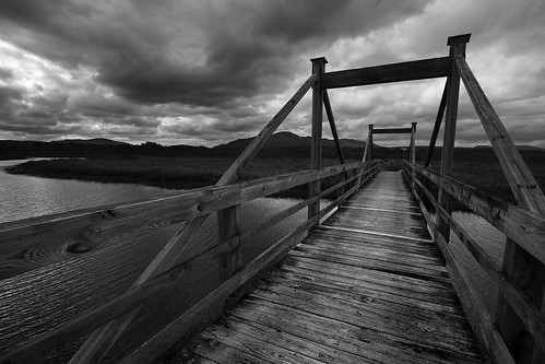 wood bridge autumn blackandwhite canada fall canon landscape quebec magog orford estrie t3i 600d gsamie guillaumesamie