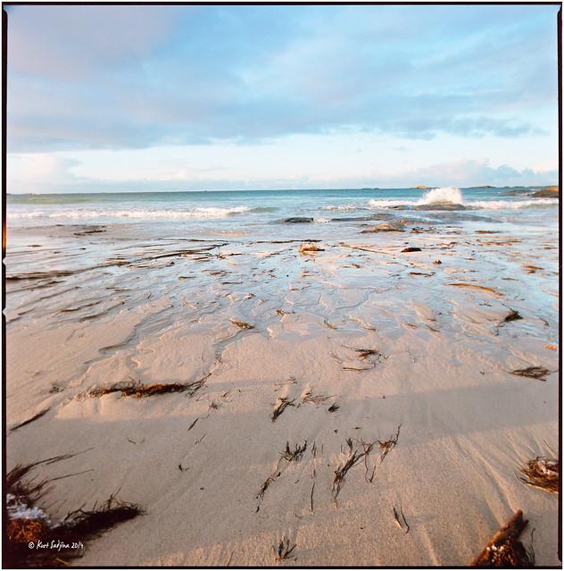 Blimsanden beach_Hasselblad