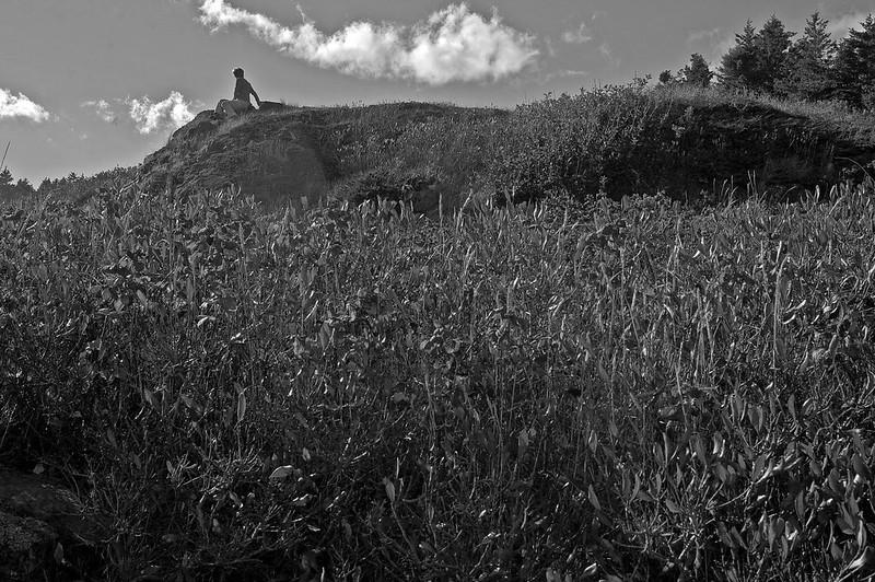 Katherine Duncan Aimone, behind Pulpit Rock, Monhegan, Maine, Nikon D40, nikon nikkor 55mm f/3.5, 10.5.14, version 2