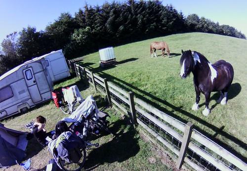 our neighbours at Loch House Farm Caravan Park