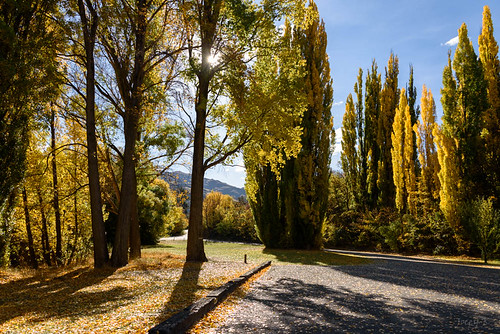 autumn trees newzealand sky clouds landscape clyde shadows scene hills autumncolours southisland centralotago autumncolour manuherikiavalley tripdownsouth populartrees