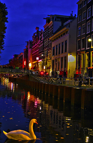 nightphotography urban holland reflection nature water netherlands amsterdam reflections canal swan europe canals urbannature nightscapes waterreflections dewallen reflectionsinwater europenature redlightdistrictamsterdam