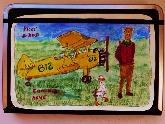 pilot-and-bird-coming-home