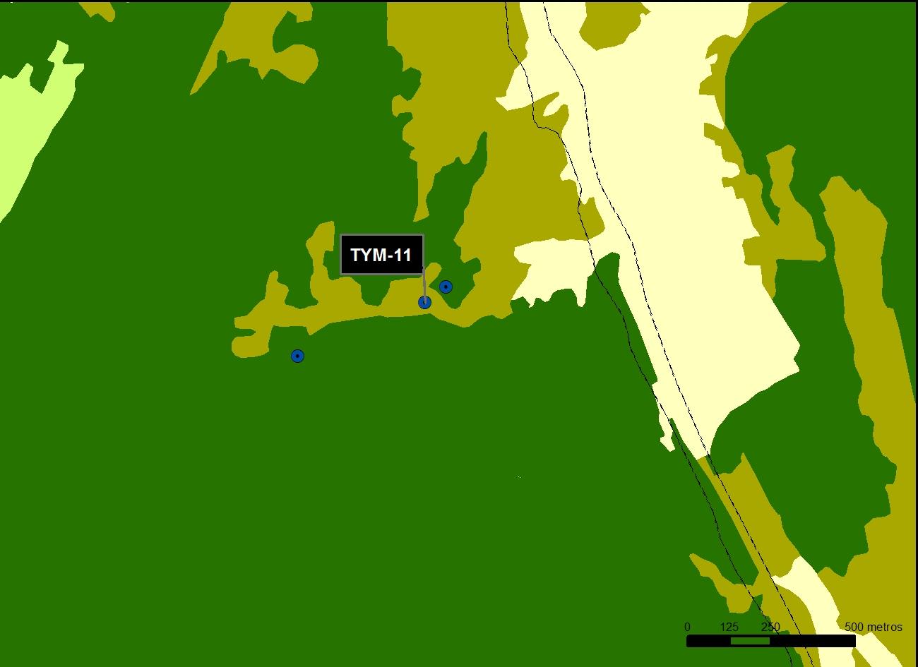 TYM_11_M.V.LOZANO_MORO_MAP.VEG