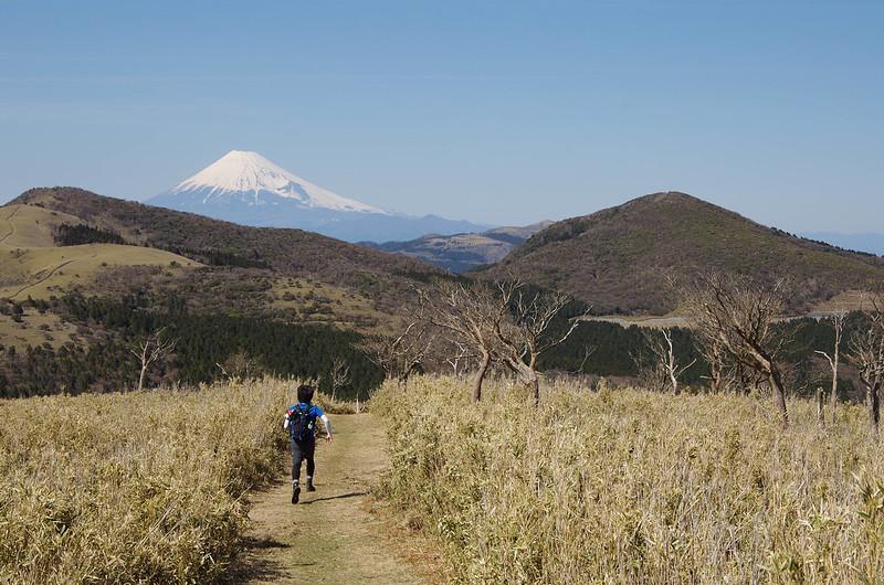 2014-03-31_00579_伊豆稜線トレイル.jpg