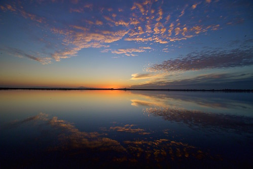 sunset reflection nature water beautiful clouds landscape mirror pretty peaceful delta calm sacramento tranquil sacramentoriver waterscape