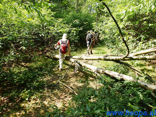 2016-06-04  KIWANIS Paleizen wandeltocht 36 Km  (91)
