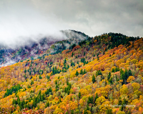 augphotoimagery blueridgeparkway mountains nature outdoors scenic trees scottcreek northcarolina unitedstates