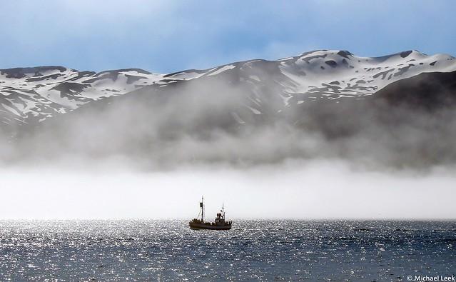Whale-watching off Húsavík; Iceland, North Atlantic