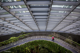 Strolling inside the Cloud Forest building - Singapore | by Phil Marion (176 million views - THANKS)
