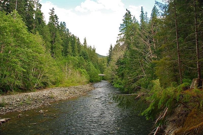 Ralph River, Strathcona Provincial Park, Vancouver Island, British Columbia, Canada