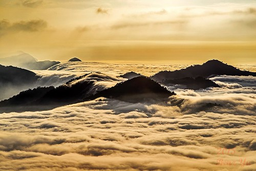 風景 阿里山 雲海 山景 雲瀑 色溫 隙頂 二延平 傳說路