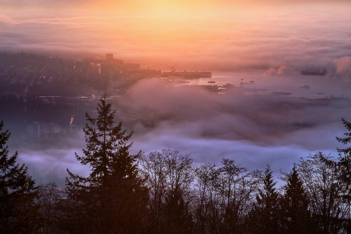 city morning sunlight weather fog vancouver clouds sunrise dawn cityscape ngc foggy cityscapes columbia british vancouverbc vancity vancouverisawesome insidevancouver vancitybuzz bunlee bunleephotography fogcouver veryvancouver