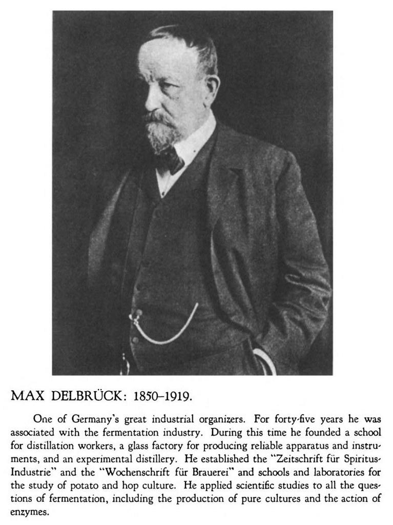 max-delbruck