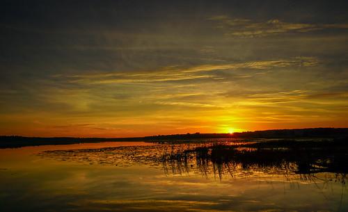 sunset usa landscape photography florida tallahassee hiddenpond sonyalpha a6000 lakecarr sonyepz1650mm sonya6000 sonyilce6000 kimmienflorida