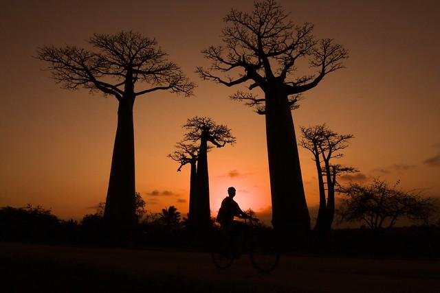 En vélo à Madagascar