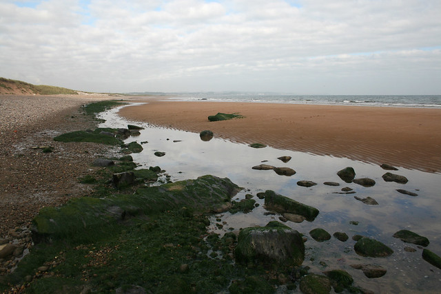 The coast west of Arbroath