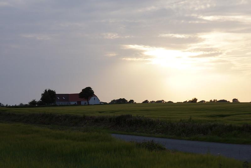 Kaedeby-Haver-2013-07-02 (3)
