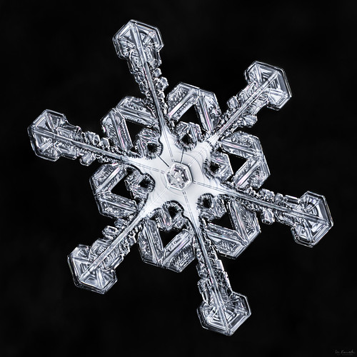 snowflake winter snow cold macro ice nature water frozen crystal geometry flake symmetry mpe