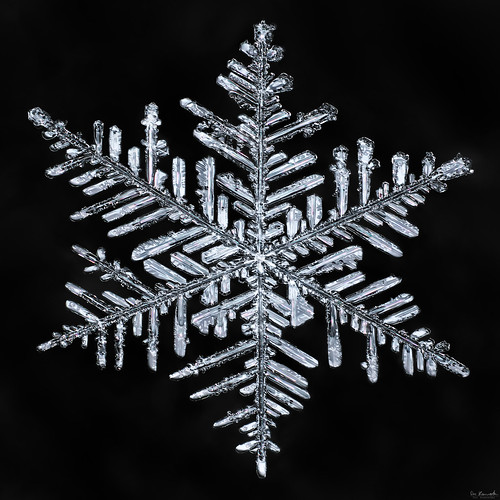 snowflake winter snow macro ice water frozen crystal flake fractal mpe focusstacking