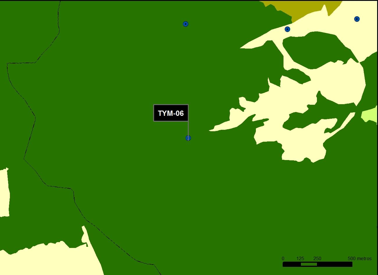 TYM_06_M.V.LOZANO_SAN PEDRO_MAP.VEG