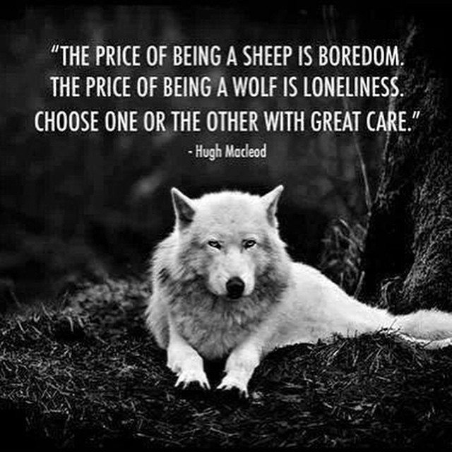Lone wolf, love this great quote. I\'m Wolfy all the way ...