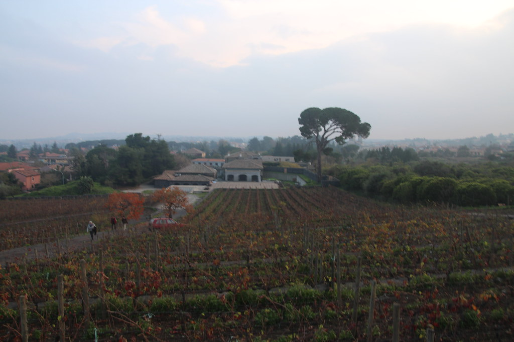 Mount Etna and the Benanti Winery