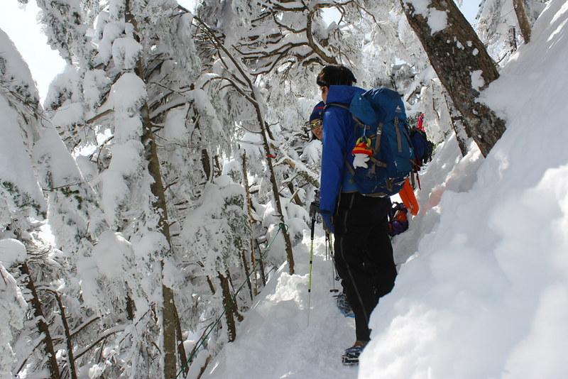 北横岳の樹林帯へ