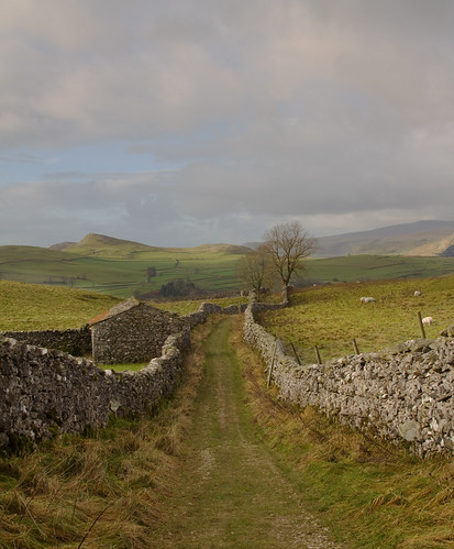 Yorkshire Dales | by Mike Wiliams