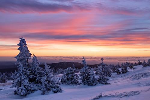 berg brocken clouds gipfel harz morgen morning mountain schnee snow sonnenaufgang sunrise tannen wald winter wolken wernigerode sachsenanhalt germany