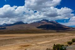 621_Lima_2014-2015