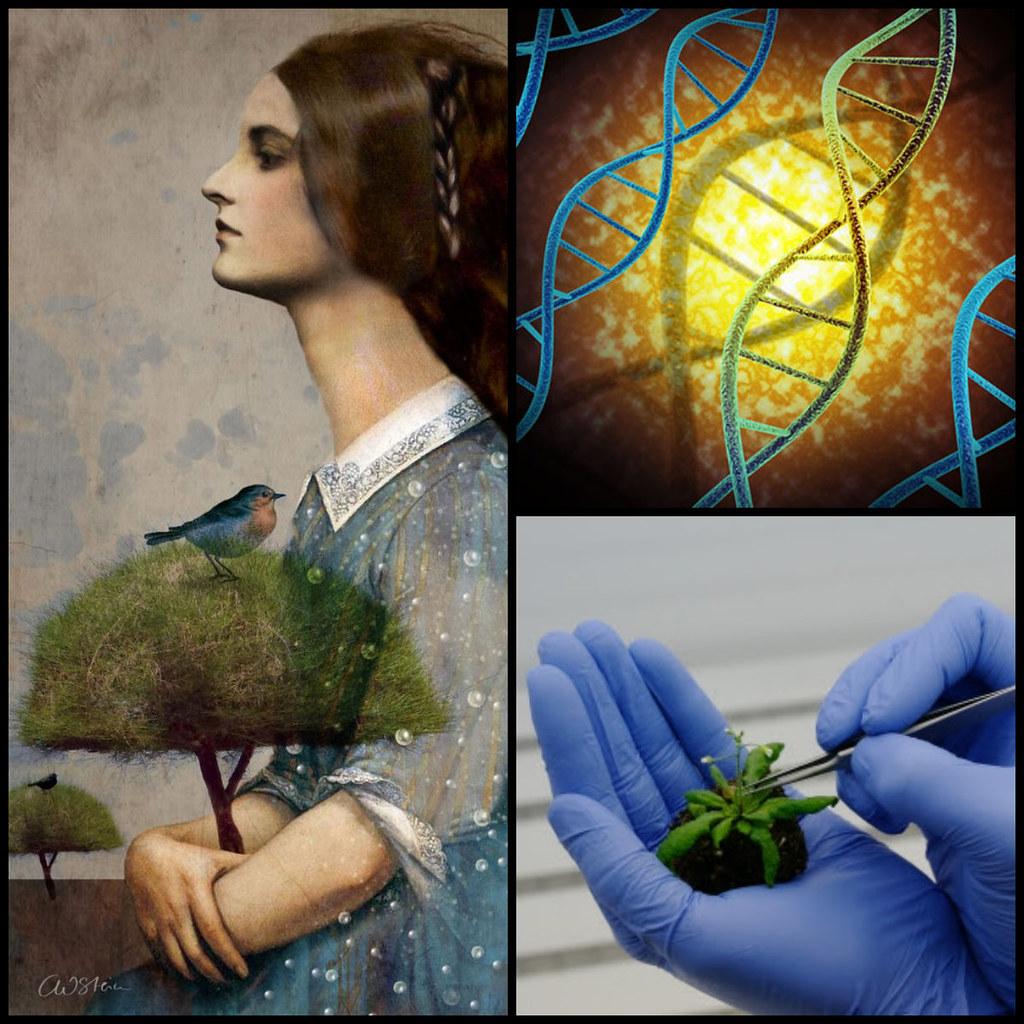 Transform Scenario - Herbarium Legacy