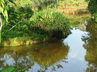 Costa Rica 2006 - 399