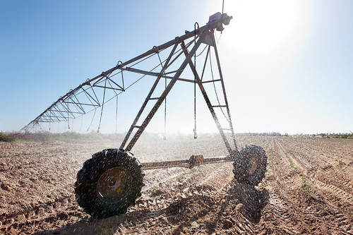 Large modern automatic sprinkler for potato crops