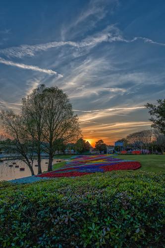 epcot disney waltdisneyworld flowerbeds flowerandgardenfestival nikcolorefex nikon1424 nikond610