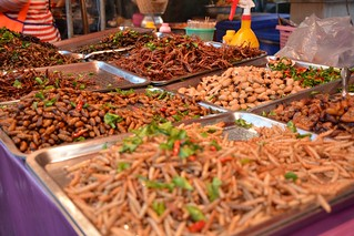 Future food: insects (Krabi, Thailand 2015) | by paularps