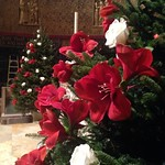 COM_2015_12_Christmas_Flower_Preparation_12