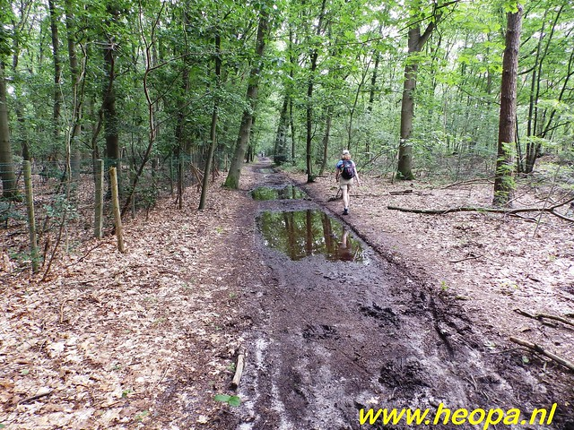 2016-06-25 Wandel 4 daagse 4e dag het gooi 30 Km (43)