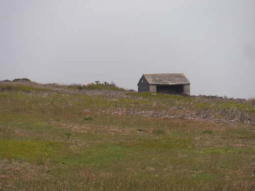 Shelter, off-route, near High Neb SWC Walk 266 - Sheffield to Bamford (via Burbage Rocks and Stanage Edge) or to Moscar Lodge [Moscar Lodge Ending]